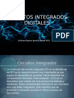 Circuitos Integrados Digitales