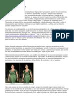Armonia Anatomico