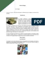 Clases de Hongos Objetivos, Intro, MarcoTeorico