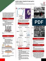 2014-spring-ay-reu project5 carbon nanotubes final-poster