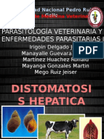 Fasiola Hepatica