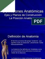 1 Anatomia Posiciones