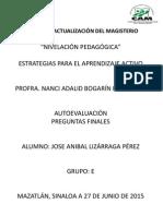 Autoevaluacion Anibal Lizárraga.pdf