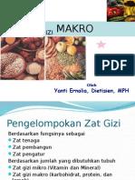 Gizi Makro