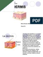Dermis Alvarez Maria