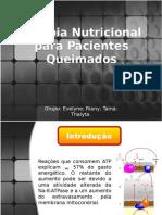 Terapia Nutricional Para Pacientes Queimados