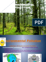 environment ppt