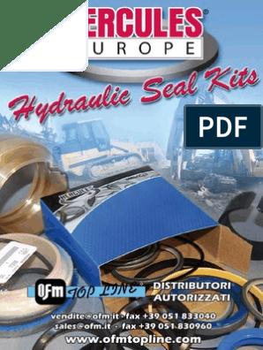 G105527 Bucket Dipper Steering Cylinder Seal Kit Fits Case 310G 350 350B 580F