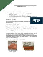 RESISTENCIA CARACTERISTICA A LA COMPRESION DE LAS PILAS  DE ALBAÑILERIA.docx