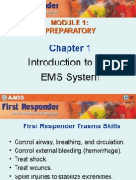 1 Introduction to the EMS