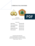 palatoschisis&labioschisis1