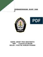 POLITIH HUKUM PIDANA.docx