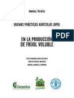 Manual del cultivo deFrijol