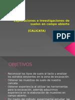 CALICATA.pptx