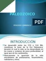 PALEOZOICO CAMBRICO.pptx