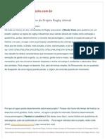 mondovazio-criacao-dos-personagens-do-projeto-rugby-animal-3768.pdf