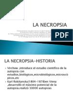 03 NECROPSIA.pdf
