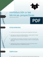 Introducción a Las Técnicas Proyectivas