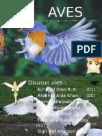 aves baru