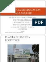 ESTRATEGIA DE EDUCACION