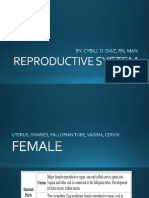 8. Reproductive System
