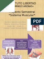 sistema muscular gabi.pptx
