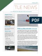bridge to wisemans cove assignment - dingy rescue article