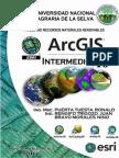 Manual Arcgis Intermedio