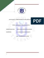 LIDERAZGO ORGANIZACIONAL.doc