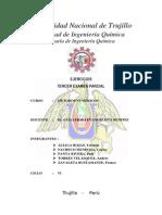 Métodos Numéricos - Tercer Examen Parcial (Trabajo Final)