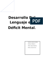 Deficit Mental Desarrollo Lenguaje