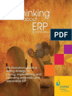 Thinking About ERP (2009)