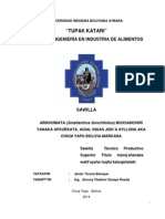 TESINA, JAVIER TICONA BENIQUE.pdf