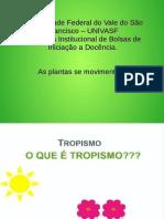 Pibid - Aula Tropismo