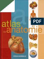 atlasde anatomieilustrat