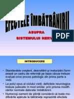 CURS OPTIONAL - FIZIOLOGIA VARSTNICULUI - Efectele Imbatranirii Asupra Sitemului Nervos