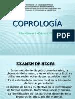 Coprologia Examen de heces