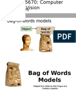 Lec29 Bag of Words