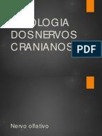 NERVOSCRANIANOS.pdf