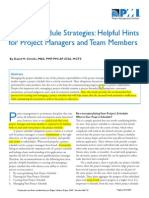 Project Schedule Strategies Hellpful Hints for Project Managers and Team Members