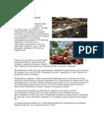 PRODUCTOS Exportados de Guatemala