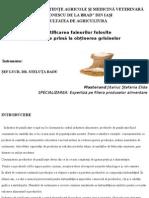 Jitariuc Stefania Elida Autentificarea Fainurilor Folosite CA Materie Prima La Obtinerea Grisinelor