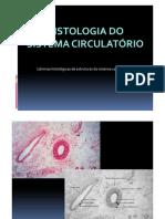 Histologia Do Sistema Cardiovascular