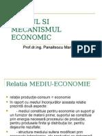 Curs 5 Ief Mediul Si Mecanismul Economic