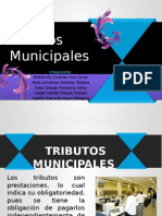 Tributos municiaples