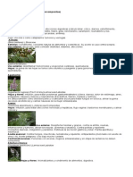 50 plantas medicinales
