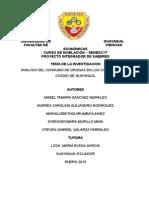 pis oficial- consumo de drogas.docx