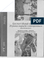 20 Poetas Mapuches Contemporáneos