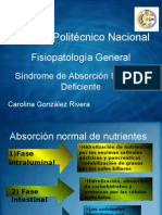 Sindrome de Absorcion Intestinal Deficiente