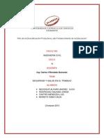 Seguridad Salud en El Trabajo Monografia Neciosup Rodriguez Salinaspdf